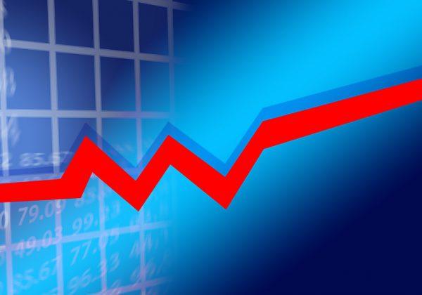 המדריך להתנהלות פיננסית נכונה בעסק